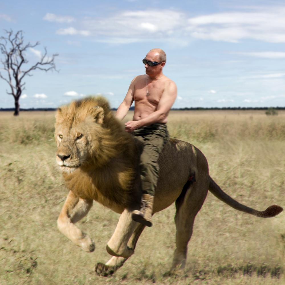 Poutine : WTF : Extra lu0026#39;agence
